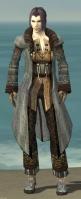 Elementalist Vabbian Armor M gray front.jpg