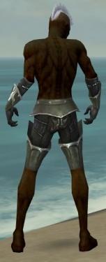Necromancer Tyrian Armor M gray arms legs back.jpg
