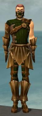 Ranger Sunspear Armor M dyed front.jpg