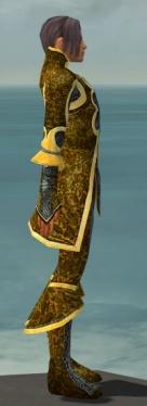 Elementalist Elite Canthan Armor M dyed side.jpg