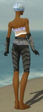 Elementalist Obsidian Armor F gray arms legs back.jpg