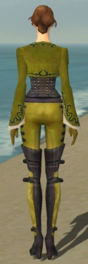 Mesmer Rogue Armor F dyed back.jpg