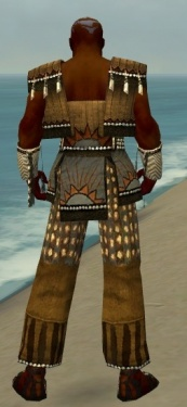 Monk Sunspear Armor M gray back.jpg