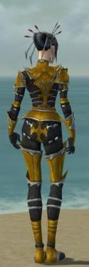 Necromancer Tyrian Armor F dyed back.jpg