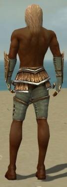 Ranger Shing Jea Armor M gray arms legs back.jpg