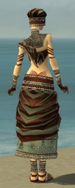 Ritualist Exotic Armor F gray back.jpg