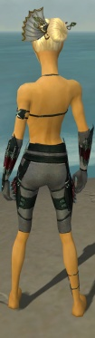 Assassin Seitung Armor F gray arms legs back.jpg
