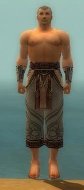 Monk Asuran Armor M gray arms legs front.jpg
