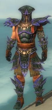 Warrior Luxon Armor M dyed front.jpg