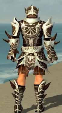 Warrior Monument Armor M dyed back.jpg