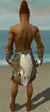 Paragon Norn Armor M gray arms legs back.jpg