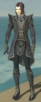 Elementalist Tyrian Armor M gray front.jpg
