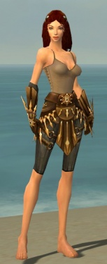 Ranger Elite Sunspear Armor F gray arms legs front.jpg
