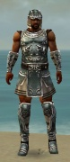 Warrior Istani Armor M gray front.jpg