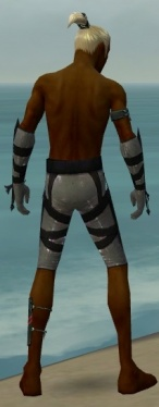 Assassin Obsidian Armor M gray arms legs back.jpg