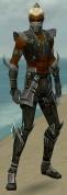 Assassin Luxon Armor M gray front.jpg