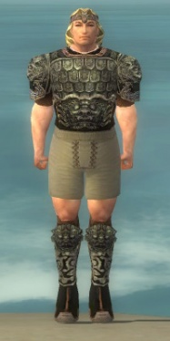 Warrior Canthan Armor M gray chest feet front.jpg