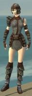 Warrior Krytan Armor F gray front.jpg