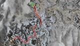 Crafter Hagrem map.jpg