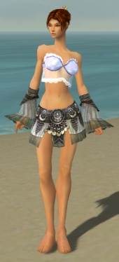 Elementalist Luxon Armor F gray arms legs front.jpg