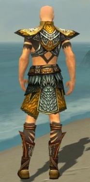Ritualist Deldrimor Armor M dyed back.jpg