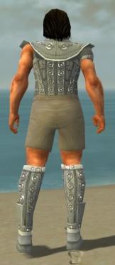 Warrior Ascalon Armor M gray chest feet back.jpg