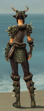 Warrior Elite Charr Hide Armor F gray back.jpg