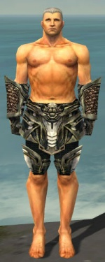 Warrior Elite Kurzick Armor M gray arms legs front.jpg