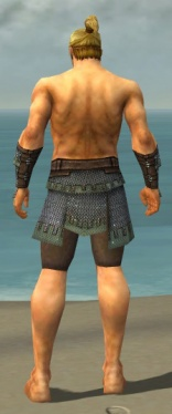 Warrior Tyrian Armor M gray arms legs back.jpg