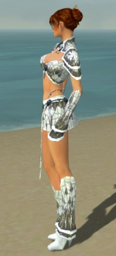 Elementalist Elite Iceforged Armor F gray side.jpg