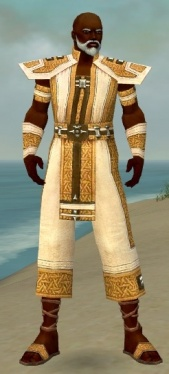 Monk Elite Saintly Armor M dyed front.jpg