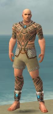 Monk Labyrinthine Armor M gray chest feet front.jpg