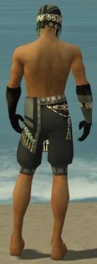 Ritualist Elite Luxon Armor M gray arms legs back.jpg