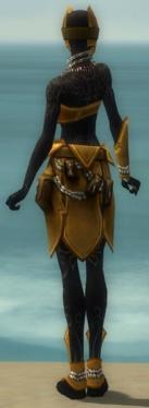 Ritualist Kurzick Armor F dyed back.jpg