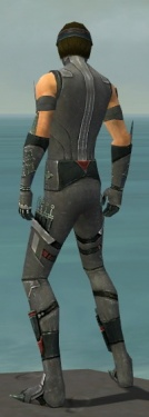 Assassin Canthan Armor M gray back.jpg