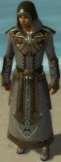 Dervish Asuran Armor M gray front.jpg