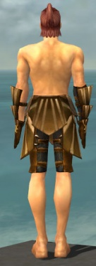 Ranger Sunspear Armor M gray arms legs back.jpg