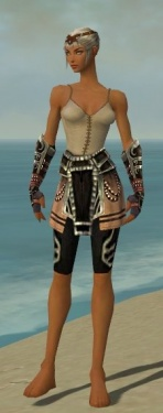 Warrior Ancient Armor F gray arms legs front.jpg
