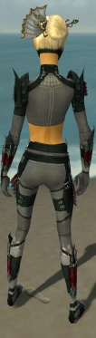 Assassin Seitung Armor F gray back.jpg