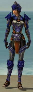 Warrior Elite Canthan Armor F dyed front.jpg
