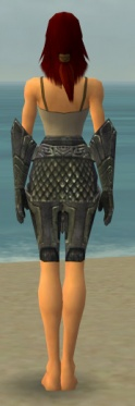 Warrior Elite Platemail Armor F gray arms legs back.jpg
