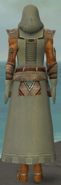 Dervish Istani Armor M gray back.jpg