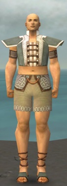 Monk Krytan Armor M gray chest feet front.jpg