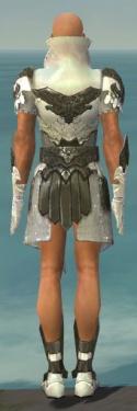 Paragon Elonian Armor M gray back.jpg