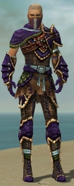 Ranger Luxon Armor M dyed front.jpg