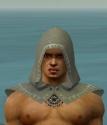 Dervish Sunspear Armor M gray head front.jpg