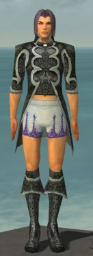 Elementalist Elite Canthan Armor M gray chest feet front.jpg