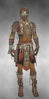 Ritualist Asuran Armor M gray front.jpg