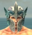 Warrior Elite Templar Armor M dyed head front.jpg