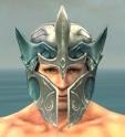 Warrior Elite Templar Armor M dyed head front.jpg